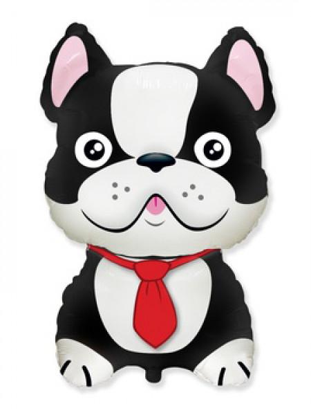 Фольгированная фигура Бульдог черный