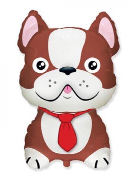 Фольгированная фигура Бульдог коричневый